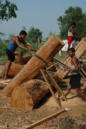 Jongens zagen boomstammen voor het maken van schoolbanken.